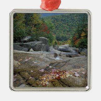 North America, US, NH, Fall foliage in New Silver-Colored Square Decoration