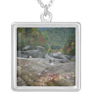 North America, US, NH, Fall foliage in New Silver Plated Necklace