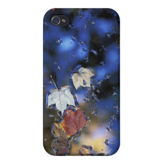 North America, US, NH, Leaves in a pond next iPhone 4/4S Covers