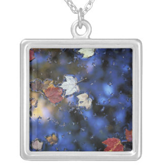 North America, US, NH, Leaves in a pond next Silver Plated Necklace
