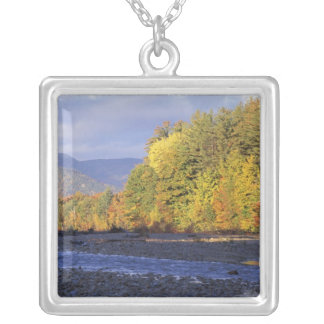 North America, US, NH, Saco River. Cobble Silver Plated Necklace
