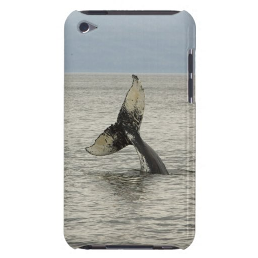 North America, USA, AK, Inside Passage. Humpback Barely There iPod Cover