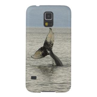 North America, USA, AK, Inside Passage. Humpback Case For Galaxy S5