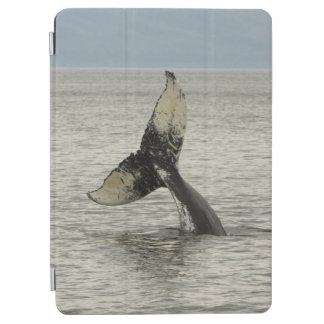 North America, USA, AK, Inside Passage. Humpback iPad Air Cover