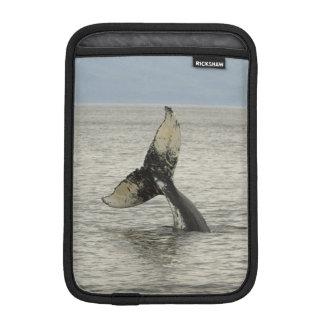 North America, USA, AK, Inside Passage. Humpback iPad Mini Sleeve