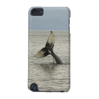 North America, USA, AK, Inside Passage. Humpback iPod Touch (5th Generation) Case