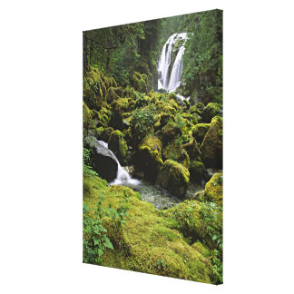 North America, USA, Alaska. A waterfall and Stretched Canvas Print