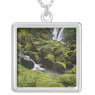 North America, USA, Alaska. A waterfall and Silver Plated Necklace
