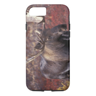 North America, USA, Alaska, Denali NP. Alces iPhone 8/7 Case