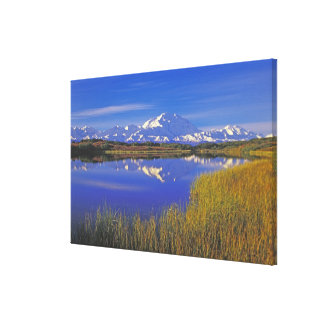 North America, USA, Alaska, Denali NP, Canvas Print