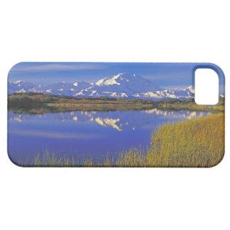 North America, USA, Alaska, Denali NP, iPhone 5 Covers