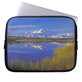 North America, USA, Alaska, Denali NP, Laptop Sleeve