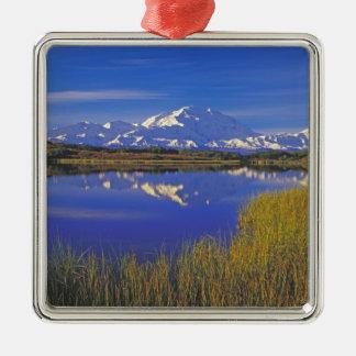 North America, USA, Alaska, Denali NP, Silver-Colored Square Decoration