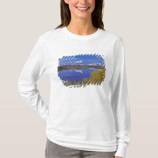 North America, USA, Alaska, Denali NP, T-Shirt