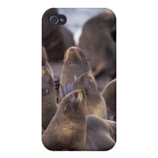 North America, USA, Alaska. Endangered iPhone 4 Case