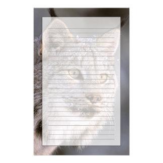 North America, USA, Alaska, Haines. Lynx (Felis 2 Personalized Stationery