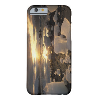 North America, USA, Alaska, Ice Bay, Icescape, Barely There iPhone 6 Case