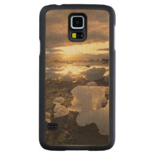 North America, USA, Alaska, Ice Bay, Icescape, Carved Maple Galaxy S5 Case