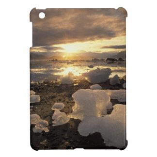 North America, USA, Alaska, Ice Bay, Icescape, Case For The iPad Mini