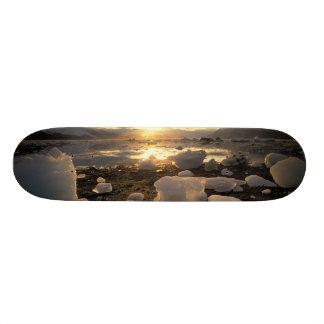 North America, USA, Alaska, Ice Bay, Icescape, Custom Skate Board