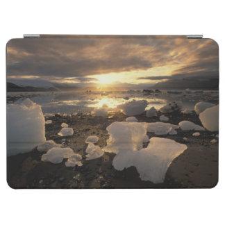 North America, USA, Alaska, Ice Bay, Icescape, iPad Air Cover