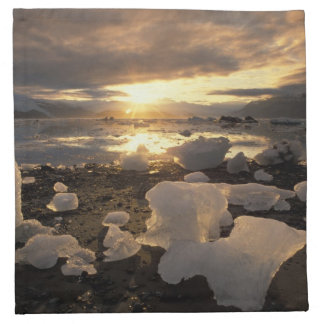 North America, USA, Alaska, Ice Bay, Icescape, Napkin