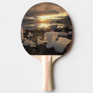 North America, USA, Alaska, Ice Bay, Icescape, Ping Pong Paddle