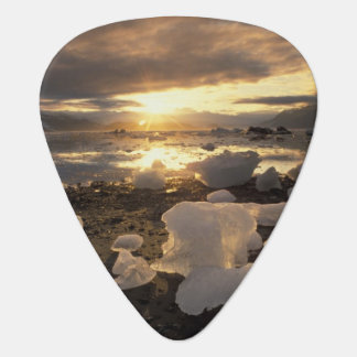 North America, USA, Alaska, Ice Bay, Icescape, Plectrum