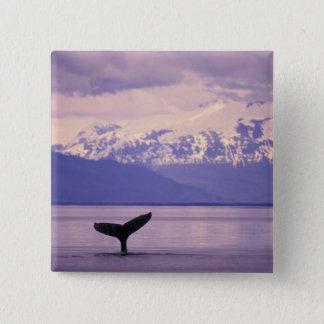 North America, USA, Alaska, Inside Passage. 15 Cm Square Badge