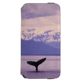 North America, USA, Alaska, Inside Passage. Incipio Watson™ iPhone 6 Wallet Case