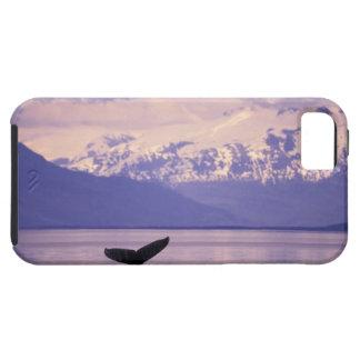 North America, USA, Alaska, Inside Passage. iPhone 5 Case