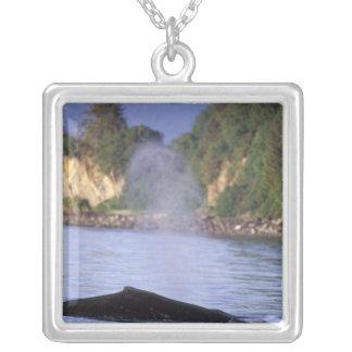 North America, USA, Alaska, Inside Passage. Silver Plated Necklace