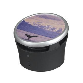 North America, USA, Alaska, Inside Passage. Speaker