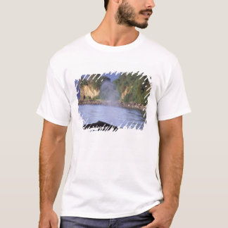 North America, USA, Alaska, Inside Passage. T-Shirt