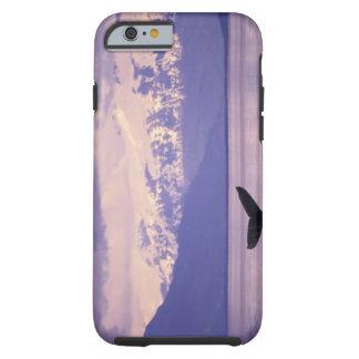 North America, USA, Alaska, Inside Passage. Tough iPhone 6 Case