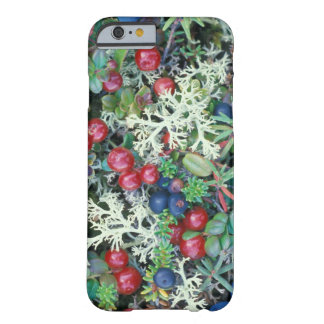 North America, USA, Alaska, Landscape, berries Barely There iPhone 6 Case