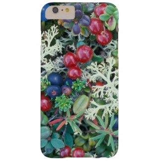 North America, USA, Alaska, Landscape, berries Barely There iPhone 6 Plus Case