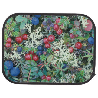North America, USA, Alaska, Landscape, berries Car Mat