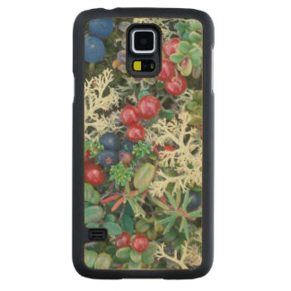 North America, USA, Alaska, Landscape, berries Carved Maple Galaxy S5 Case