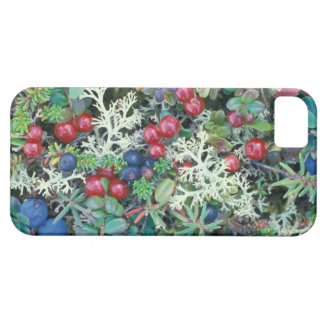 North America, USA, Alaska, Landscape, berries Case For The iPhone 5