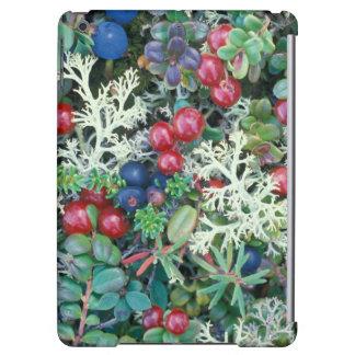 North America, USA, Alaska, Landscape, berries iPad Air Cover