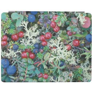 North America, USA, Alaska, Landscape, berries iPad Cover