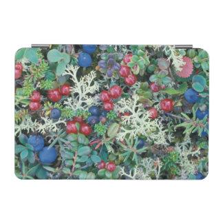 North America, USA, Alaska, Landscape, berries iPad Mini Cover