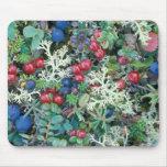 North America, USA, Alaska, Landscape, berries Mouse Pad