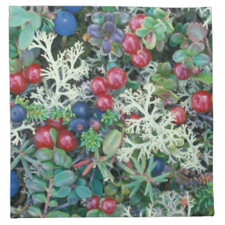 North America, USA, Alaska, Landscape, berries Napkin