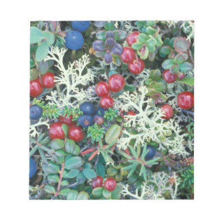 North America, USA, Alaska, Landscape, berries Notepad