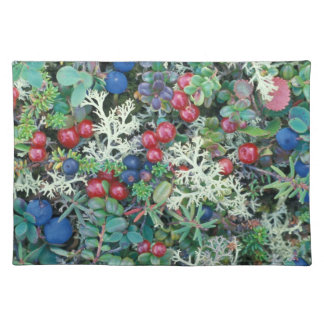 North America, USA, Alaska, Landscape, berries Placemat