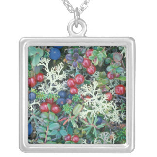 North America, USA, Alaska, Landscape, berries Silver Plated Necklace