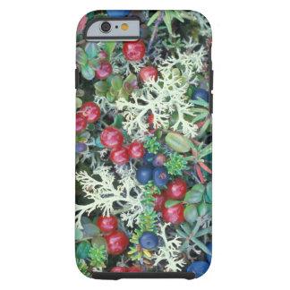 North America, USA, Alaska, Landscape, berries Tough iPhone 6 Case