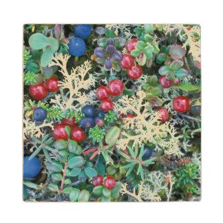 North America, USA, Alaska, Landscape, berries Wood Coaster